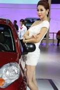 奇瑞瑞麒M1展台车模